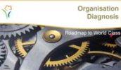 Org_diagnosis_1
